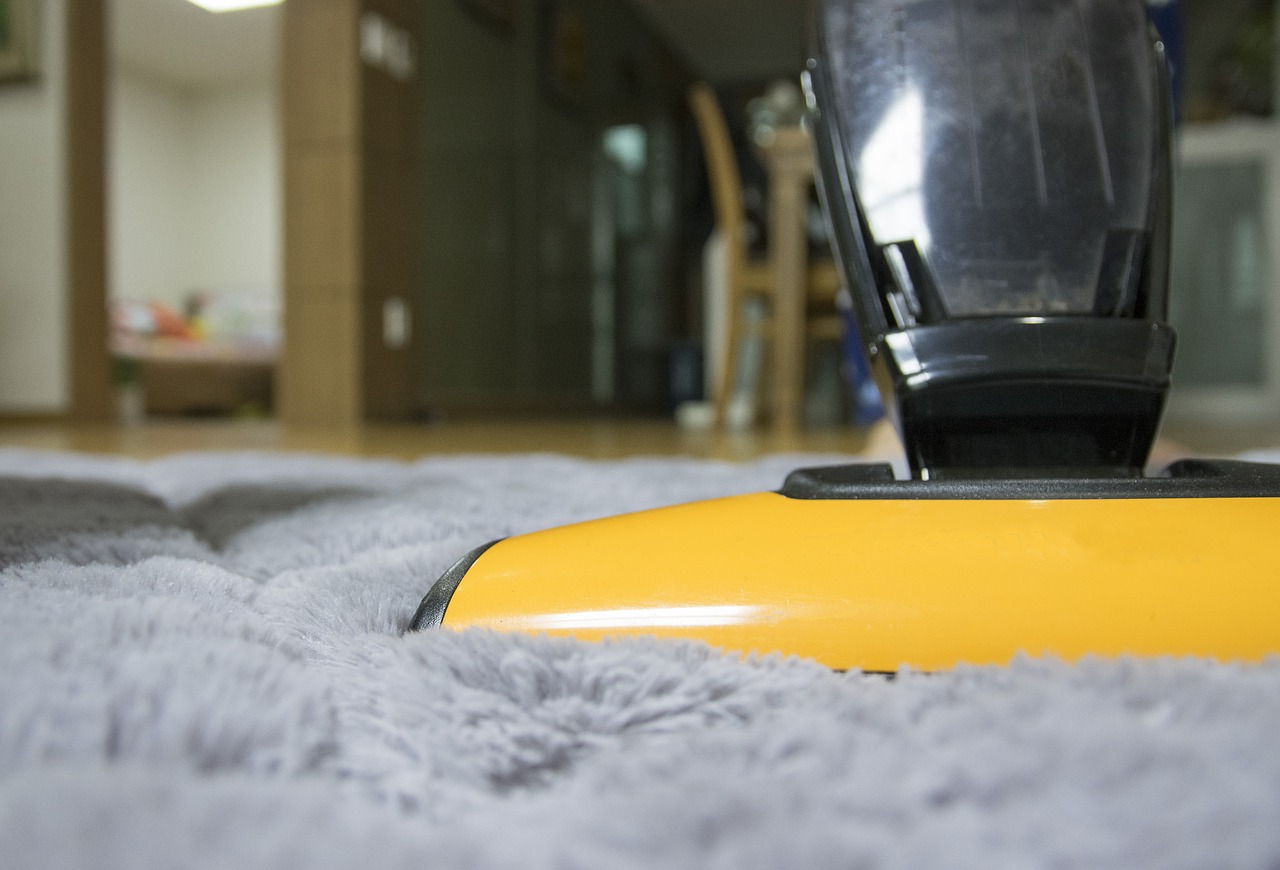 Hire Professional House Cleaners to Get Rid of Pet Hair in Your Home